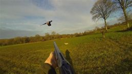 chasse 4