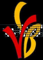 logo Volley bALL