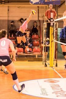 Charleroi Volley 5
